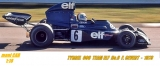 TYRRELL - F1 FORD 006 TEAM ELF TYRRELL No.6 F. Cevert -  1973 (1:18) MCG